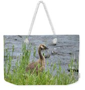 Young Canadian Goose Weekender Tote Bag