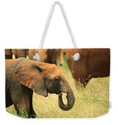 Young Elephant Weekender Tote Bag