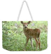 Young Fawn In The Woods Weekender Tote Bag