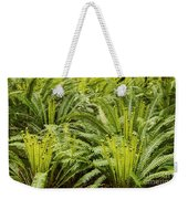 Young Fiddleheads Weekender Tote Bag