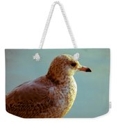 Young Gull Weekender Tote Bag