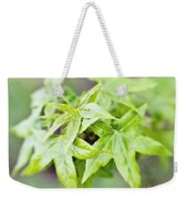 Young Leaves Weekender Tote Bag
