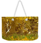 Young Male Buck Weekender Tote Bag