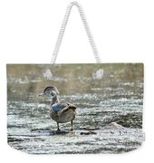Young Male Wood Duck Weekender Tote Bag