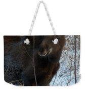 Young Moose 4 Weekender Tote Bag