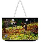 Young Moose In Autumn Weekender Tote Bag