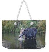 Young Moose Weekender Tote Bag