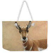 Young Pronghorn Weekender Tote Bag by James W Johnson