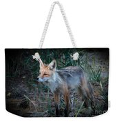 Young Red Fox Weekender Tote Bag