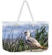 Young Seagull No. 2 Weekender Tote Bag