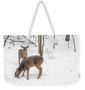 Young Spike Buck And Doe Whitetail Deer In Snowy Woods Weekender Tote Bag