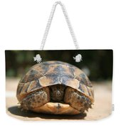 Young Spur Thighed Tortoise Looking Out Of Its Shell Weekender Tote Bag