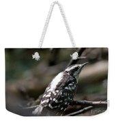 Young Woodpecker Weekender Tote Bag