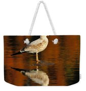Youthful Reflections Weekender Tote Bag