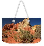 Yucca Badlands And Colors Weekender Tote Bag