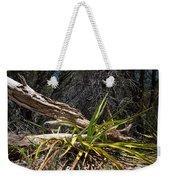 Pedernales Park Texas Yucca By The Dead Tree Weekender Tote Bag