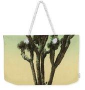 Yucca Cactus At Hesperia California Weekender Tote Bag