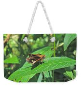 Zabulon Skipper Butterfly - Poanes Zabulon - Female Weekender Tote Bag