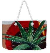 Zebra Cactus In Red Glass Weekender Tote Bag