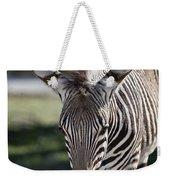 Zebra Crossing V7 Weekender Tote Bag