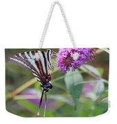 Zebra Swallowtail Butterfly On Butterfly Bush  Weekender Tote Bag
