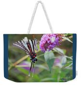 Zebra Swallowtail Butterfly On Butterfly Bush  Weekender Tote Bag