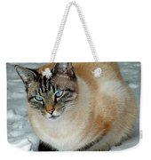 Zing The Cat On The Porch In The Snow 2 Weekender Tote Bag