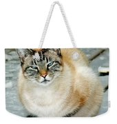 Zing The Cat On The Porch In The Snow Weekender Tote Bag