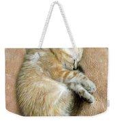 Zing The Kitten Weekender Tote Bag