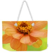 Zinnia On A Brilliant Spring Day Weekender Tote Bag