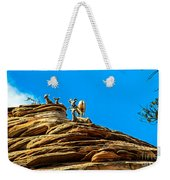 Zion Bighorn Sheep Weekender Tote Bag