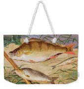 An Angler's Catch Of Coarse Fish Weekender Tote Bag
