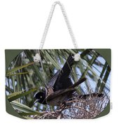 Boat-tailed Grackle - Quiscalus Major Weekender Tote Bag
