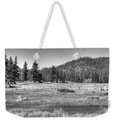 Prairie In South Lake Tahoe Weekender Tote Bag