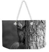 Red Squirrel In Bw Weekender Tote Bag