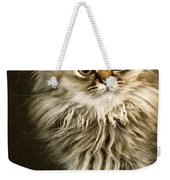 Startled Persian Kitten Weekender Tote Bag