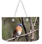 Sucarnoochee River - Bluebird Weekender Tote Bag