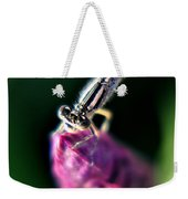 0001 Dragonfly On A Salvia Burgundy Candle Weekender Tote Bag