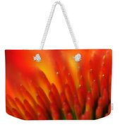 0001 Echinacea Pow Wow Sunrise Weekender Tote Bag