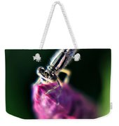0002 Dragonfly On A Salvia Burgundy Candle Weekender Tote Bag