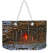 0004 Natural Elements Weekender Tote Bag