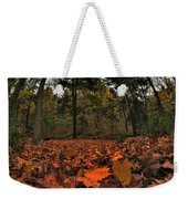 0013 Letchworth State Park Series Weekender Tote Bag