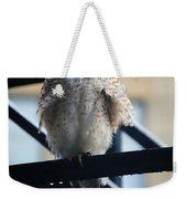 02 Falcon Weekender Tote Bag