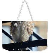 03 Falcon Weekender Tote Bag