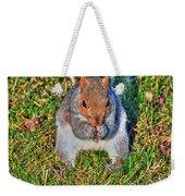 06 Grey Squirrel Sciurus Carolinensis Series Weekender Tote Bag