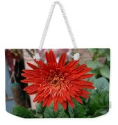 A Beautiful Red Flower Growing At Home Weekender Tote Bag