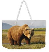 A Brown Grizzly Bear Ursus Arctos Weekender Tote Bag