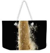 A Cattail Typha Latifolia Disperses Weekender Tote Bag