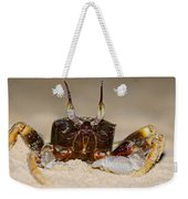 A Crab On The Shore  Weekender Tote Bag