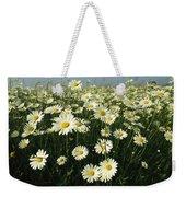 A Field Filled With Daisies In Bloom Weekender Tote Bag